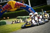 Red Bull Kart Fight