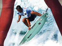 Polish Surfing Challenge 2010